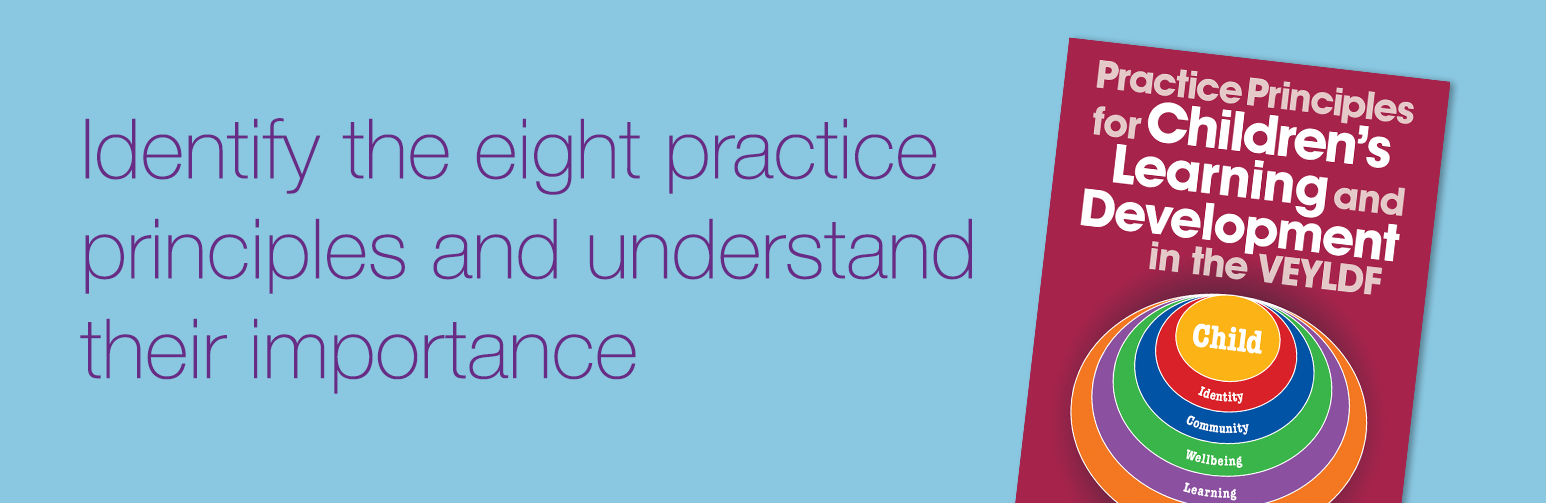 Identify the eight practice principles and understand their importance