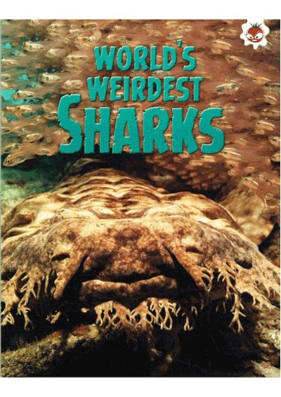 Sharks - World's Weirdest Sharks Cover