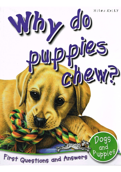 Why do puppies chew? Cover