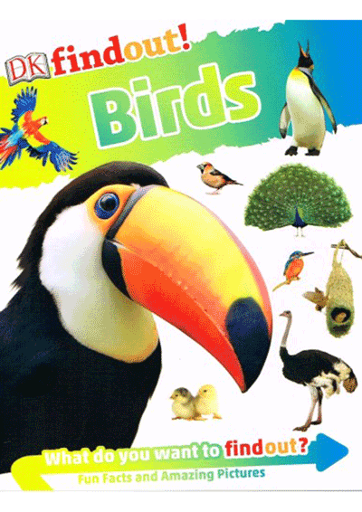 DK Findout - Birds Cover