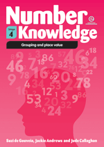 Number Knowledge: Grouping and place value (Stage 4)