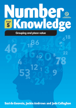 Number Knowledge: Grouping and place value (Stage 5)