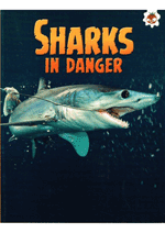 Sharks - Sharks in Danger