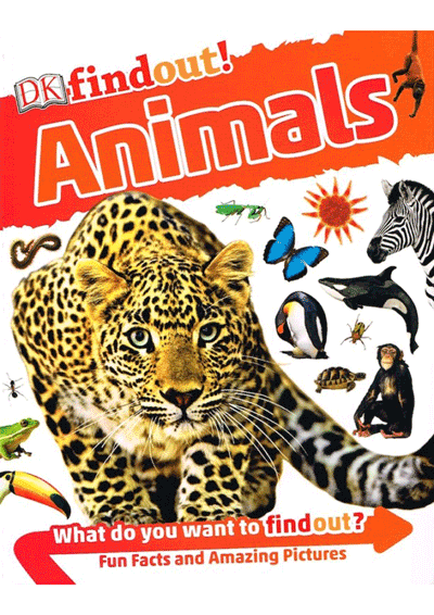 DK Findout! - Animals Cover