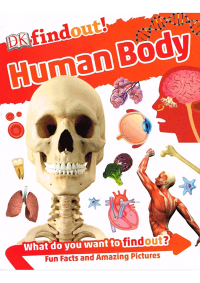 DK Findout! - Human Body Cover