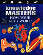 Knowledge Masters - How Your Body Works