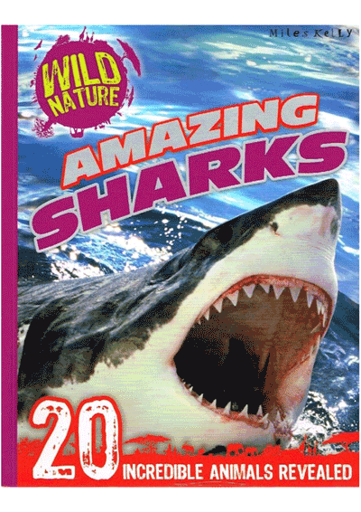 Wild Nature Amazing Sharks Cover