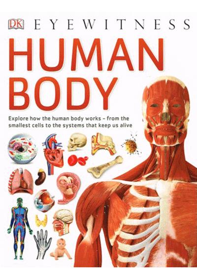 DK Eyewitness - Human Body Cover